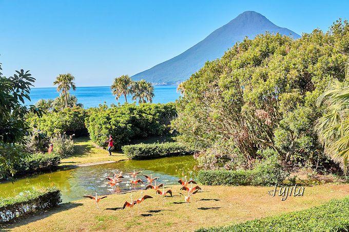 【一日目 午後】開聞岳と亜熱帯植物が絶景「長崎鼻パーキングガーデン」