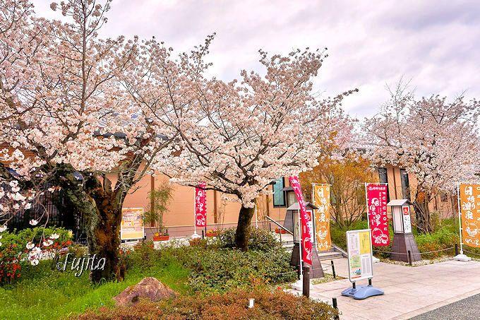 1.風風の湯/京都市