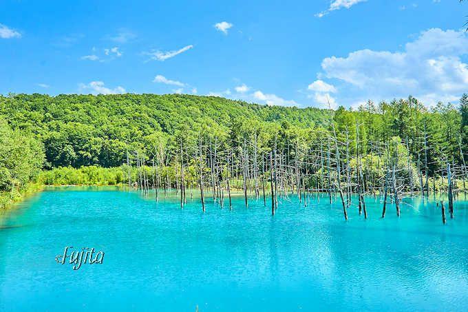 「青い池」が綺麗に見える条件は季節よりも天気!