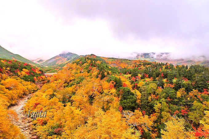 十勝岳温泉は車で行ける日本一早い紅葉名所