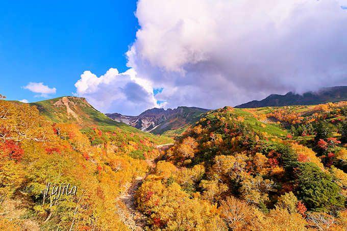 北海道・十勝岳温泉で紅葉狩り!日本一早い紅葉に車で行こう
