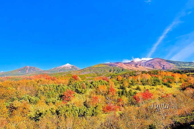 望岳台の紅葉は十勝岳とコラボ!雄大な景観が魅力