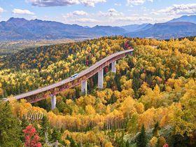 北海道・上士幌町の紅葉5選!三国峠の絶景と聖地オッパイ山で紅葉狩り