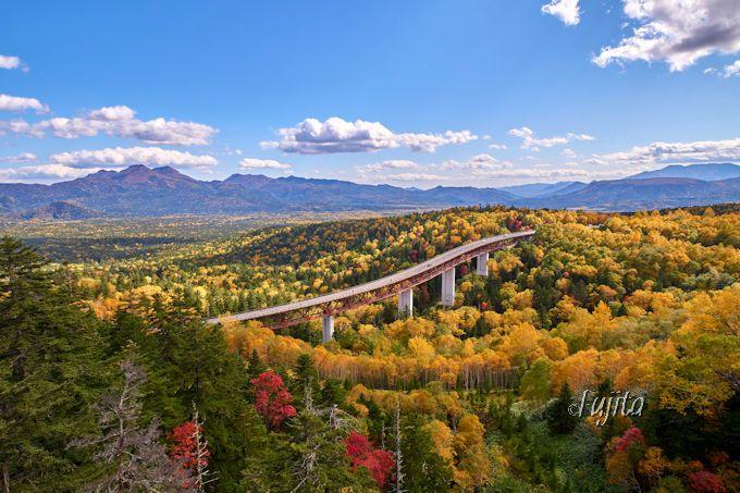 「三国峠」松見大橋で紅葉狩り!北海道らしい雄大な絶景