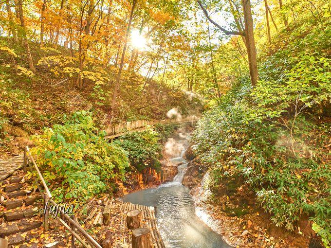 大湯沼川天然足湯で紅葉狩り!