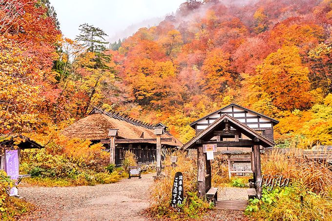 鶴の湯別館「山の宿」周辺の自然環境も必見!