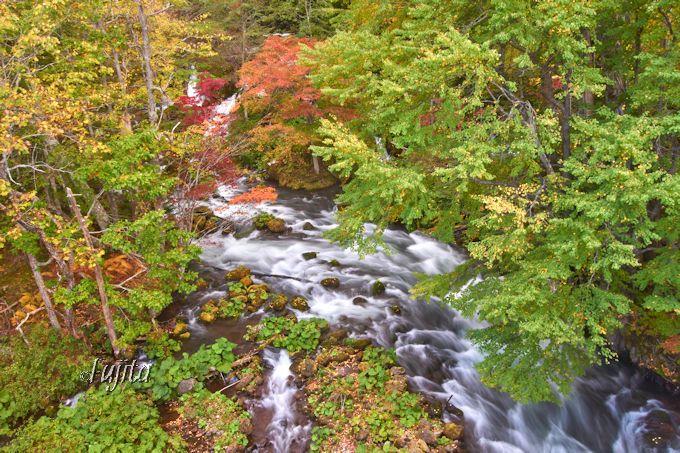 阿寒湖温泉の紅葉名所「滝見橋」