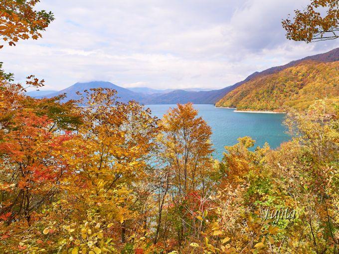 休暇村支笏湖の紅葉も必見!