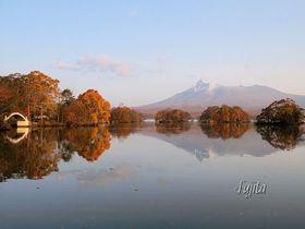 大沼公園の紅葉ベスト5!観光遊覧船や散策で北海道の紅葉狩り