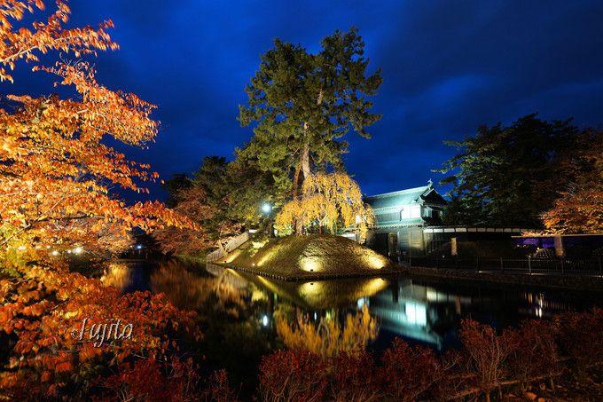 弘前公園・桜の紅葉ライトアップ