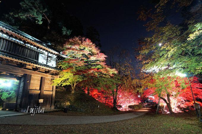 弘前城東内門の紅葉ライトアップ