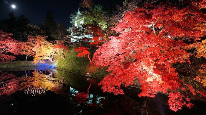 弘前公園の紅葉ライトアップが凄い!青森・弘前城で紅葉狩り