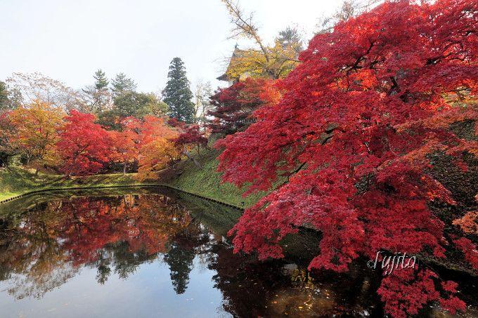 弘前城丑寅櫓の紅葉ライトアップ