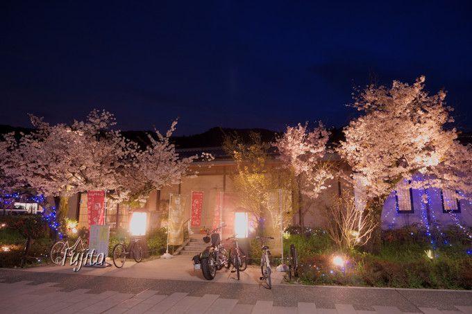 京都嵐山温泉で夜桜見物と日帰り入浴!