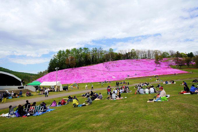 芝桜を見ながらジンギスカンも可能!