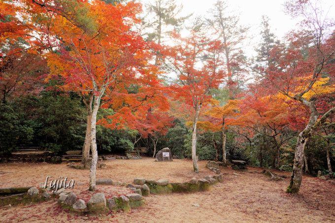 紅葉谷公園の紅葉は遊歩道の横に注目!