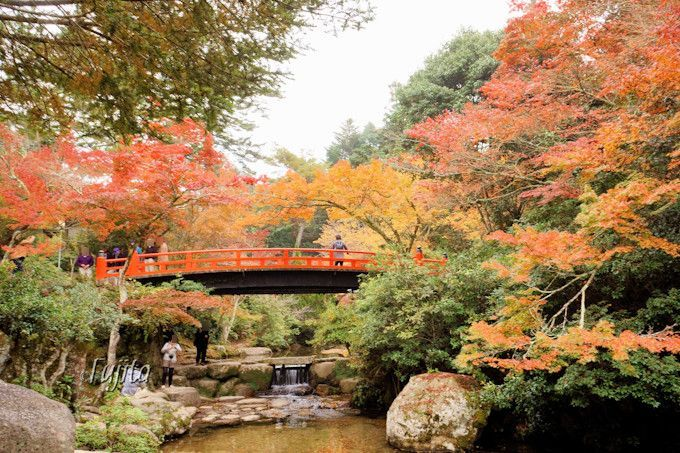 宮島の紅葉は紅葉谷公園がおすすめ!広島の世界遺産で紅葉狩り