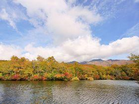 鎌池の紅葉が美しい!長野・小谷村の秘湯で紅葉狩りハイキング
