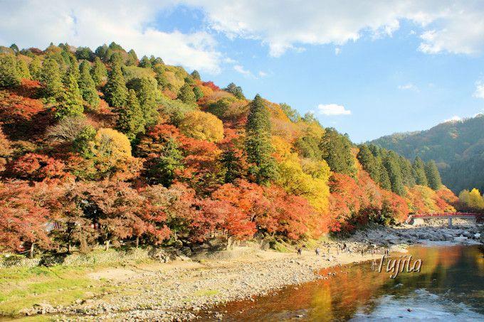 香嵐渓の紅葉を巴橋から一望!
