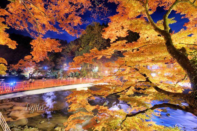 香嵐渓の紅葉はライトアップも必見!愛知・東海屈指の紅葉狩り名所