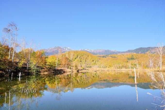一の瀬園地「まいめの池」の紅葉も必見!