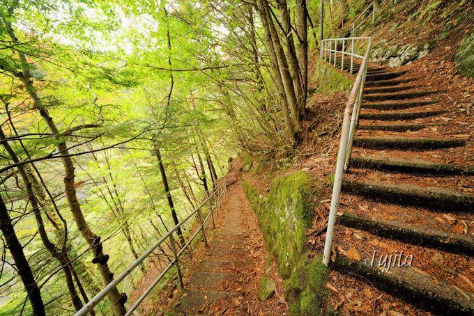 「番所大滝」の紅葉は曇天がおすすめ!