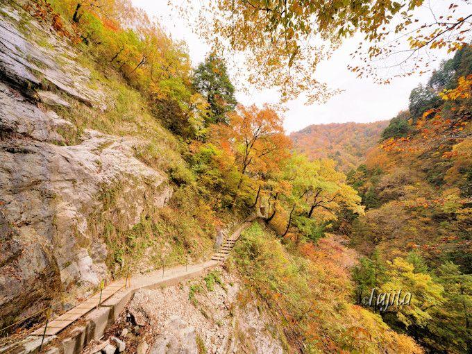 黒薙温泉まで紅葉ハイキング!