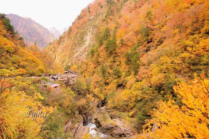 名剣温泉や祖母谷温泉も紅葉に包まれる!