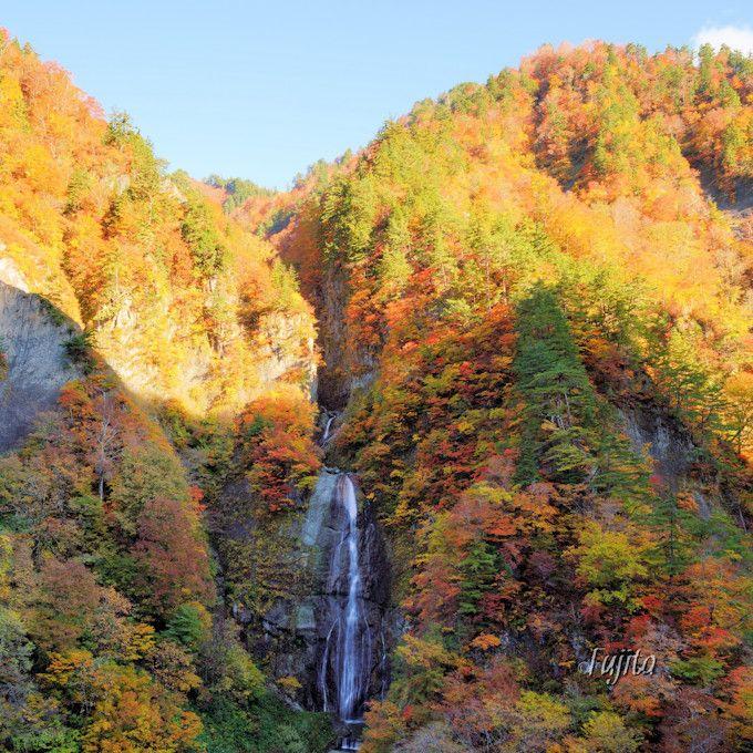 「蛇谷大橋」の紅葉は下車して観光!