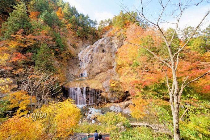 白山白川郷ホワイトロードの紅葉は晩秋がおすすめ!石川の紅葉狩り名所