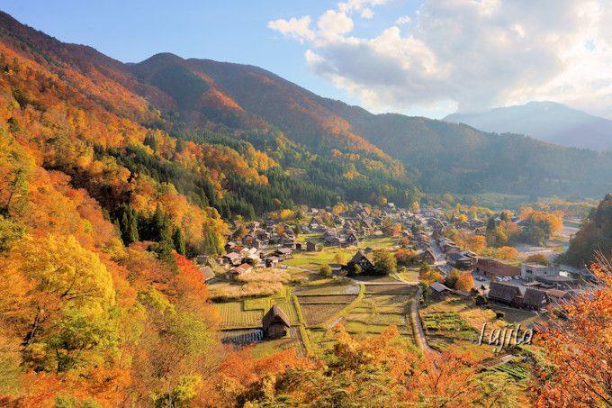 世界遺産「白川郷」の紅葉が夕日に輝く!