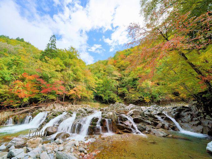 せせらぎ街道の紅葉で大自然を満喫!岐阜・飛騨の紅葉狩り名所