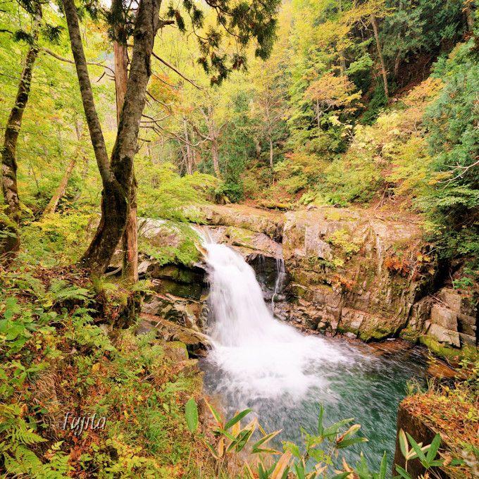 「山彦の滝」と「白龍の滝」の紅葉!