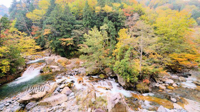 照葉峡は名もない滝の紅葉も素敵!