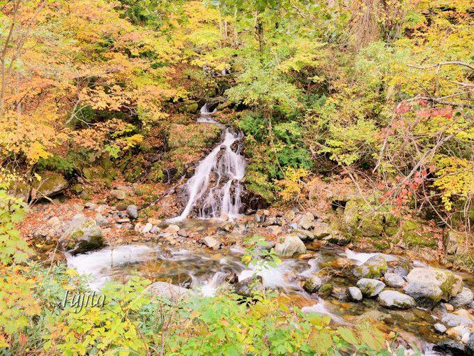照葉峡の紅葉!「ひぐらしの滝」と「時雨の滝」