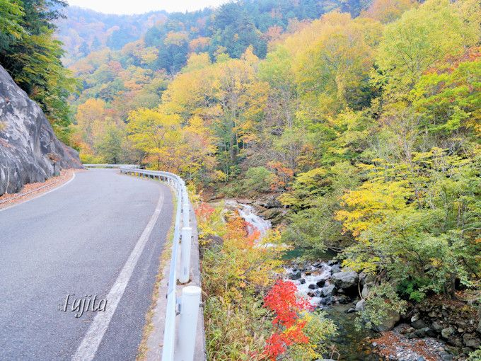 「木精の滝」の紅葉も必見!