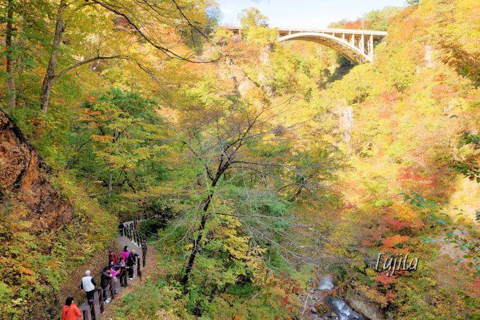 紅葉の鳴子峡遊歩道へ!