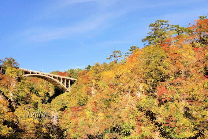 鳴子峡の紅葉は早朝から鑑賞可能!