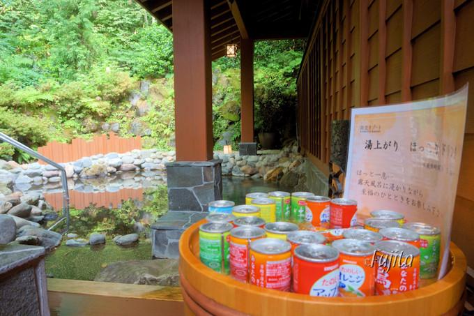森の露天風呂と貸切風呂で鳴子温泉を満喫!