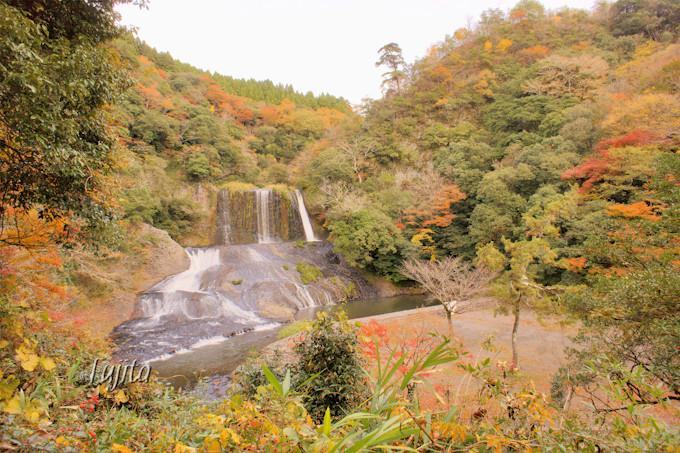 滝の紅葉にも注目!南耶馬渓「龍門の滝」