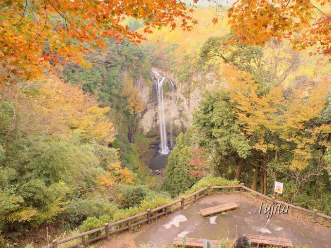 椎屋耶馬渓「福貴野の滝」の紅葉は展望台から!