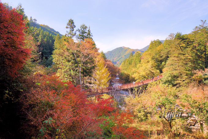 「秋川渓谷」で紅葉と温泉を満喫!瀬音の湯は宿泊も可能