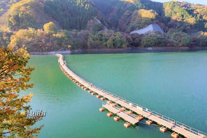「奥多摩湖」の紅葉は麦山浮橋とコラボ!