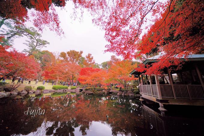 大田黒公園の紅葉は夕方から訪れよう!