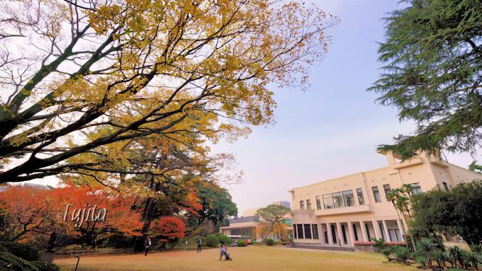 東京都庭園美術館は紅葉の穴場!