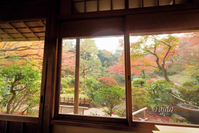 重要文化財の茶室「光華」から紅葉狩り!