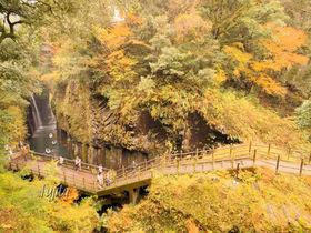 高千穂峡の紅葉は宮崎を代表する名所!天孫降臨の地で紅葉狩り
