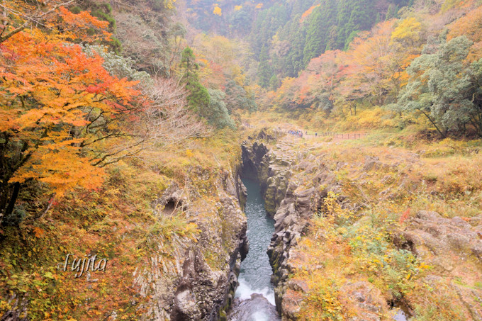 高千穂峡遊歩道の紅葉も必見!