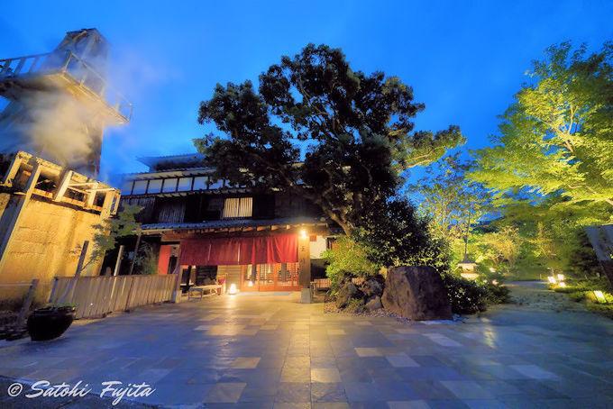 夜の庭園ライトアップが印象的な美しさ!