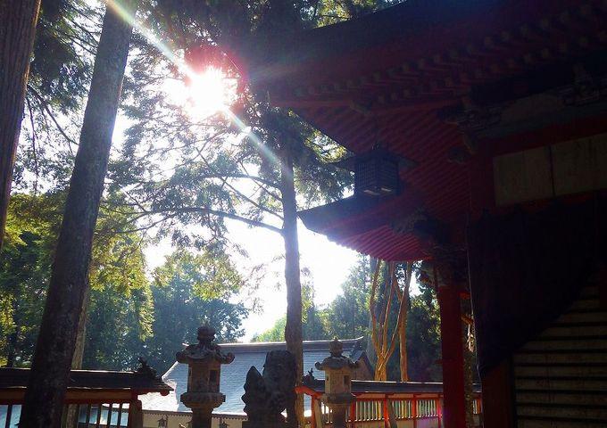 重要文化財の社殿が美しい「御形神社」を訪ねる